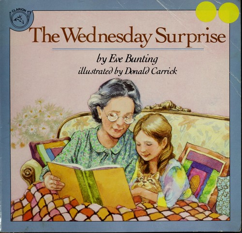 Book Cover, The Wednesday Surprise