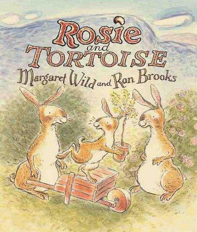 Book Cover, Rosie and Tortoise
